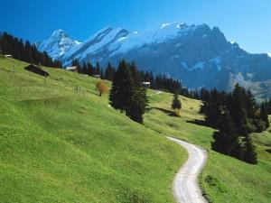 Immagini della Svizzera